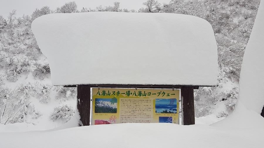 八海山②ドカ雪1