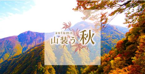 banner-aki