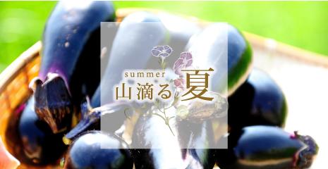 banner-natsu