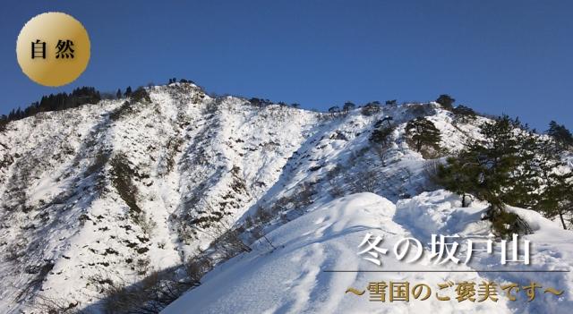 sakadoyama-fuyu-top