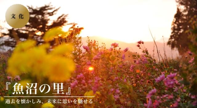 uonumanosato-top